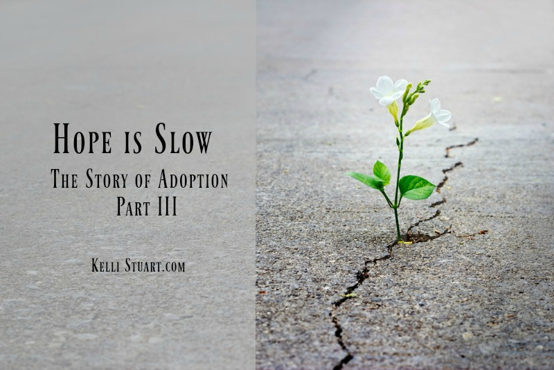 Hope Is Slow: The Story of Adoption: Part III